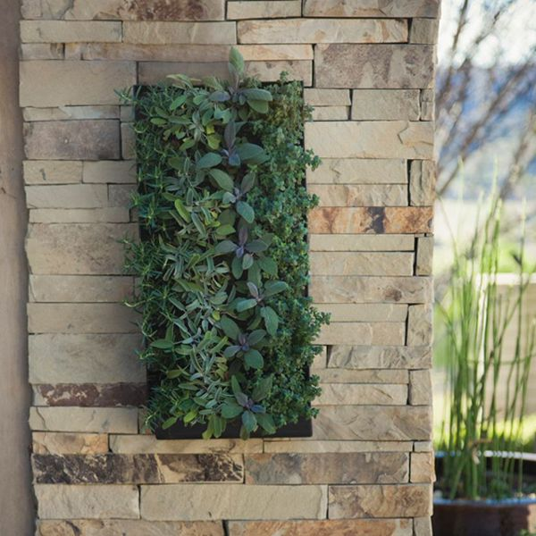 Make A Living Wall Outdoors With This Planter. GroVert Living Wall Planter  With Mounting Bracket