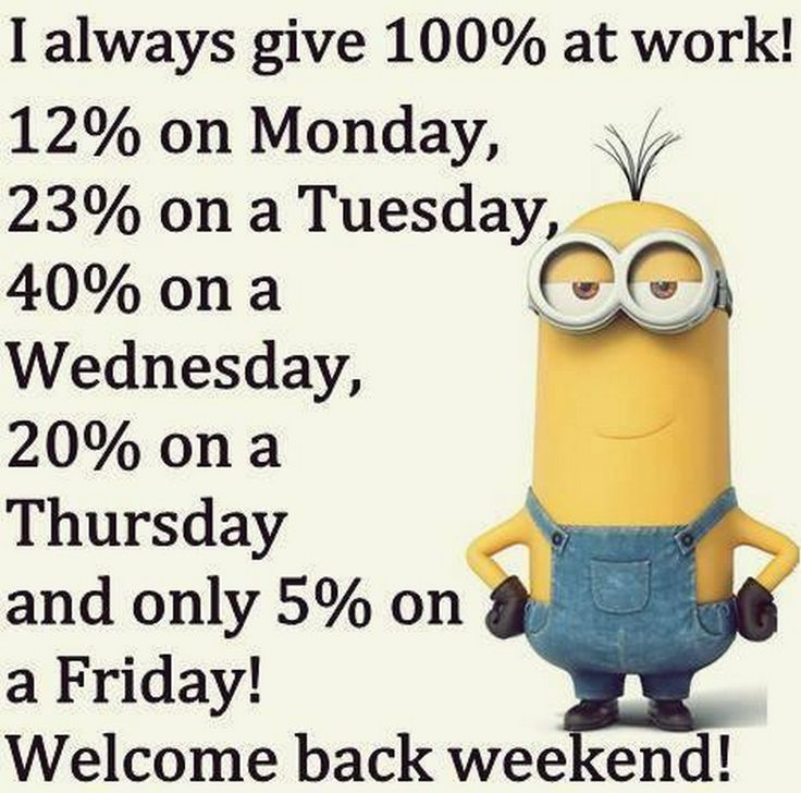 funny pictures of minions from despicable me 015207 am monday - 20 Best Funny Quotes To Support Job Seekers
