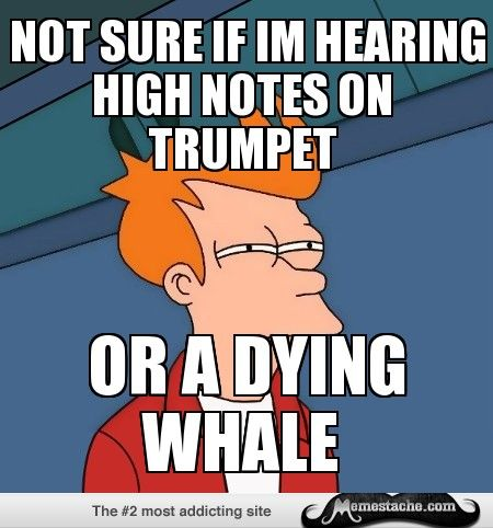 Futurama Fry: Not sure if Im hearing high notes on trumpet...
