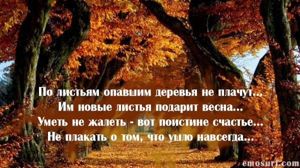 Красивые строки об осени