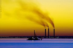 Ways on how to prevent, reduce or to stop pollution today (air, water, and land)