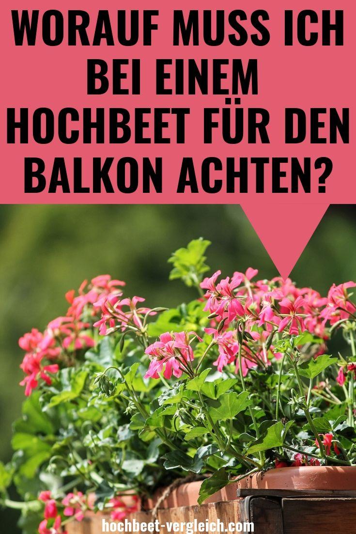 Hochbeet Balkon Ein Hochbeet Fur Den Balkon 2019 Hochbeet Hochbeet Balkon Garten Hochbeet