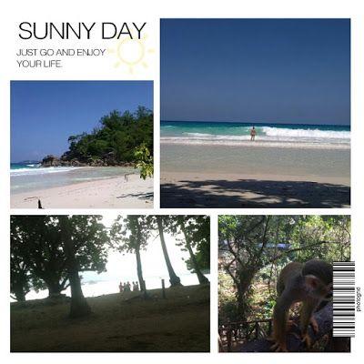 """Touren Tipp: """"El Boca de Yasica"""" Cabarete - """"Monkey Jungle und Zipe Line Garten"""" El Choco & Sosua - Norden der Dominikanischen Republik - Reise Bericht"""