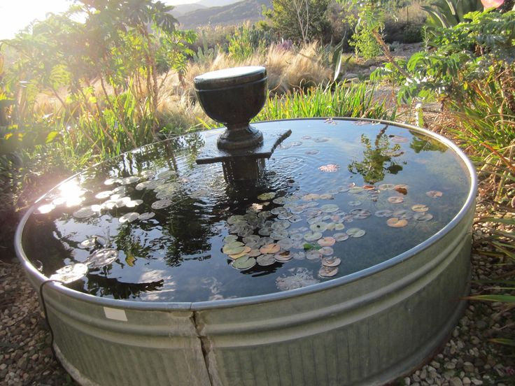 47 best tin troughs galvanized tubs images on pinterest for Koi pond tubs