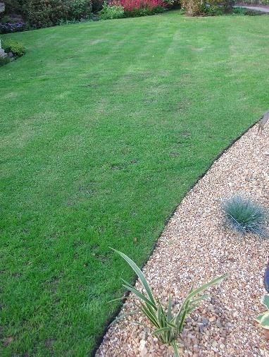 Here's a quick and proven to keep the lawn neat, edge the lawn this month and to stop wasting time every month year after year