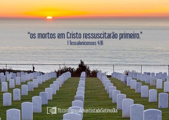Felizes e santos os que participam da primeira ressurreição! Apocalipse 20:6