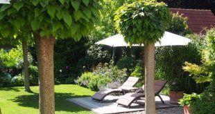 Verwenden Sie Zeitungspapier und Wasser, um das Wachstum von Unkraut in Ihrem Garten zu kontrollieren.