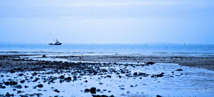 Manukau beach