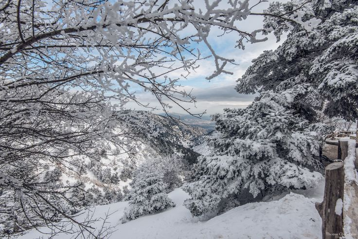 Refuge Mpafi - Parnitha, Athens Greece. Snow make the scenery beautiful!!!
