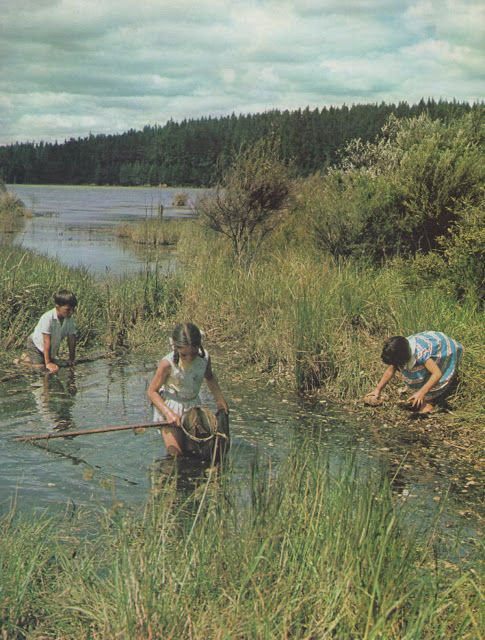 "Ans Westra. ""We Live by a Lake."" New Zealand. [1972]"