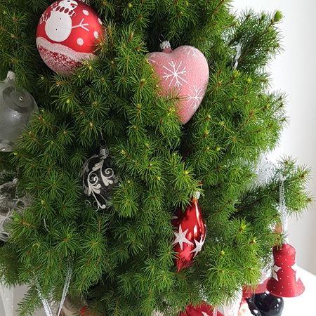 Collection Noël 2016 Père Noël