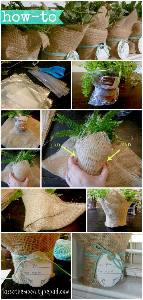 Pretty, simple hostess gift idea. All you need is a plant, some burlap, and string! Printable tag included with the tutorial. Lasso the moon blog