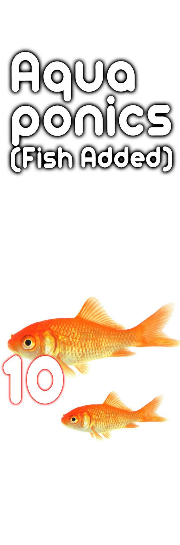 260 best aquaponica images on pinterest hydroponics aquaponics