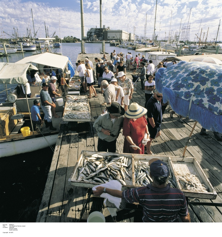 Fish Markets at Torrens Island, fresh food all around!   Image Source: SA Tourism Commission.