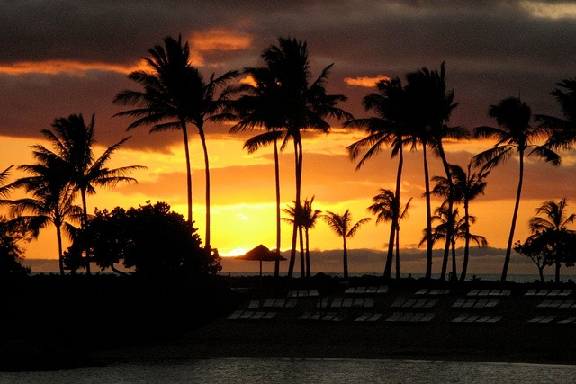 Cliché? Iconic? Wonderful? It's all of those. Hawaiian Sunset, Oahu, Hawaii, USA