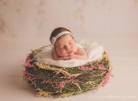 Photography props newborn props baby bowl newborn basket