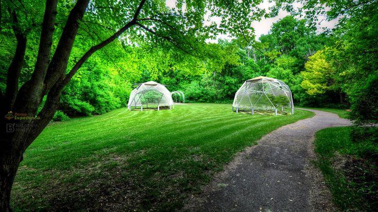 Domo como greenhouse