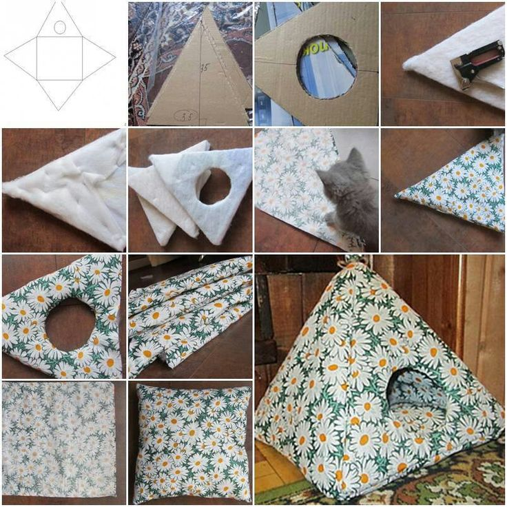 Easy DIY House for your cat!