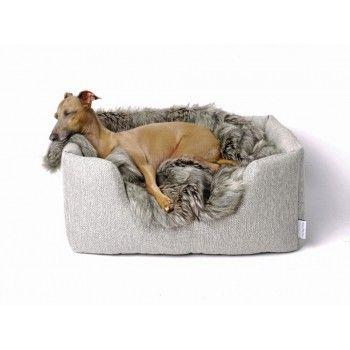 22 best miacara cane - dog beds images on pinterest
