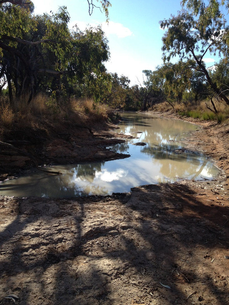 aussie outback water hole