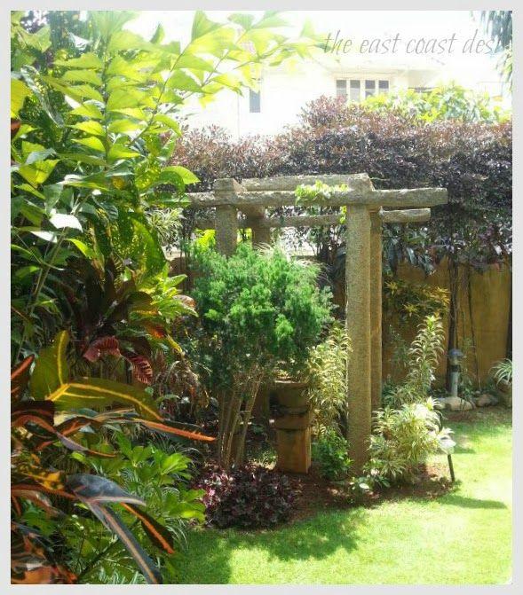 11 best Garden - tropical images on Pinterest | Green garden, East ...