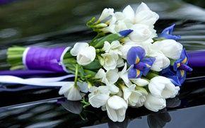 Обои цветы, фиолетовые, тюльпаны, букет, ирис, крокусы, белые