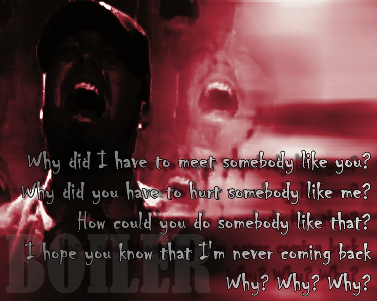 limp bizkit quotes Song Lyric Quotes In Text Image