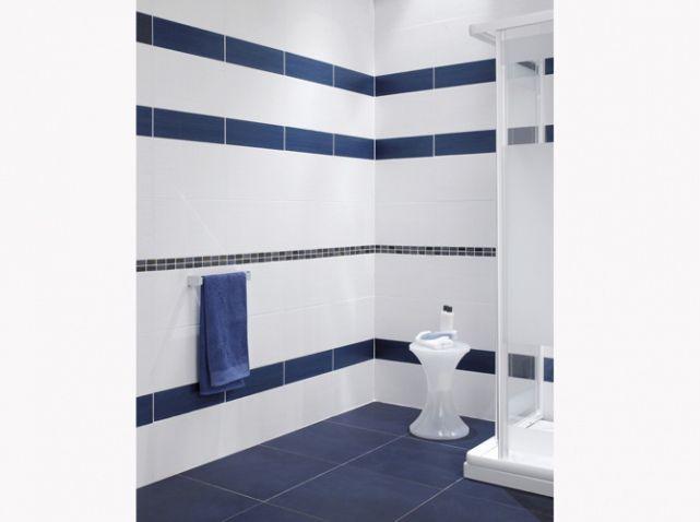 Les 25 meilleures idées de la catégorie Salles de bain bleu marine ...