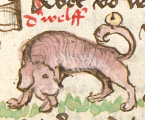 Thomasin : Der welsche Gast Schwaben, 3. Viertel 15. Jh. Cgm 571  Folio 45