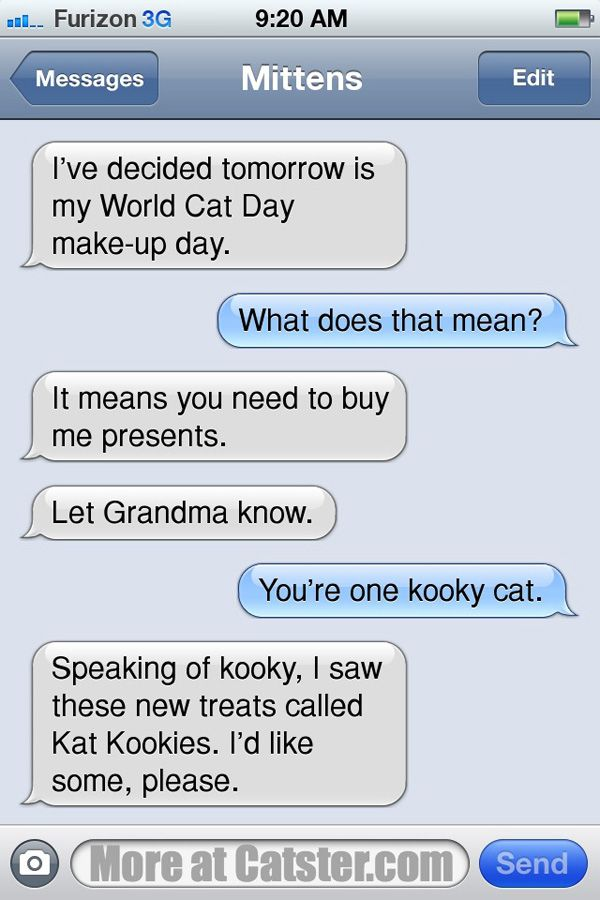 Texts From Mittens: The No-World-Cat-Day Edition