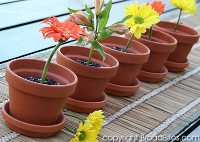 Show-stopping Chocolate Pot Plants - YES, you can eat these!