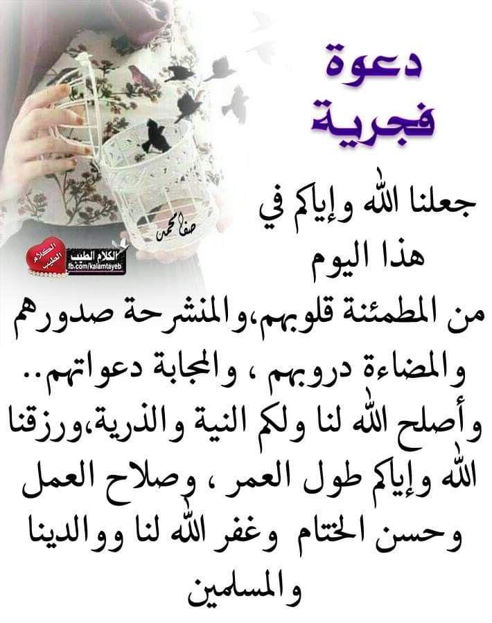 Pin By The Noble Quran On I Love Allah Quran Islam The Prophet Miracles Hadith Heaven Prophets Faith Prayer Dua حكم وعبر احاديث الله اسلام قرآن دعاء Lis