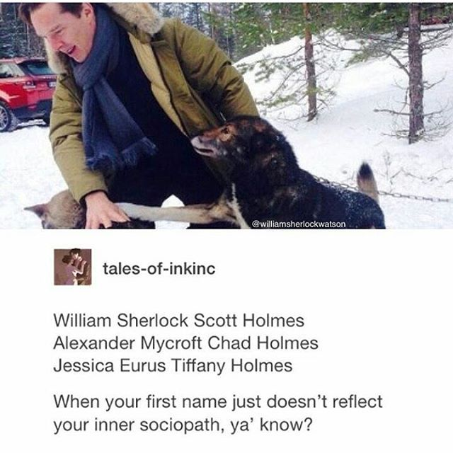 Imagine if they went by their other middle names: Scott Holmes, chad Holmes, and Tiffany Holmes