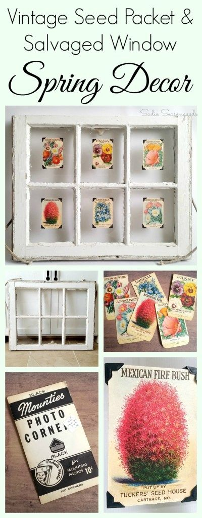Create fun, farmhouse style Spring decor by pairing an antique, salvaged window with vintage seed packets! Place one packet on each pane of glass for a lovely, shabby chic display that is perfect for a gardening or Spring themed mantel! Simple, gorgeous repurposed / upcycle DIY from #SadieSeasongoods / www.sadieseasongoods.com