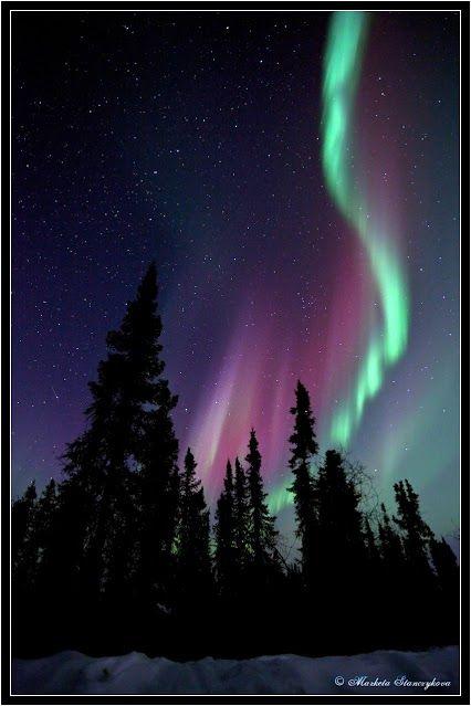 Fairbanks Alaska pohto shared by Marketa Stanczykova