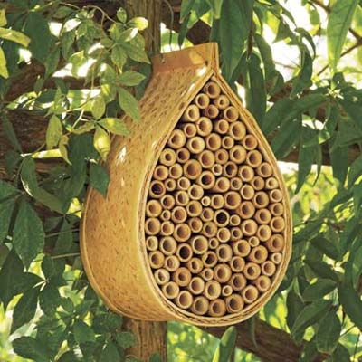 Bee Hospitable    Lure pollinating powerhouses into your garden with a condo-style bamboo hive for nonstinging mason bees.     Mason bee house, about $15; gardeners.com: Bees Hives, Beehous, Idea, Masons, Mason Bees, Bees Houses, Bee House, Gardens, Honey Bees