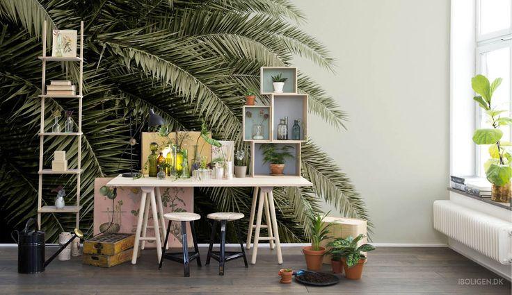 Keramik eller palmer? Sådan får du de flotteste vægge