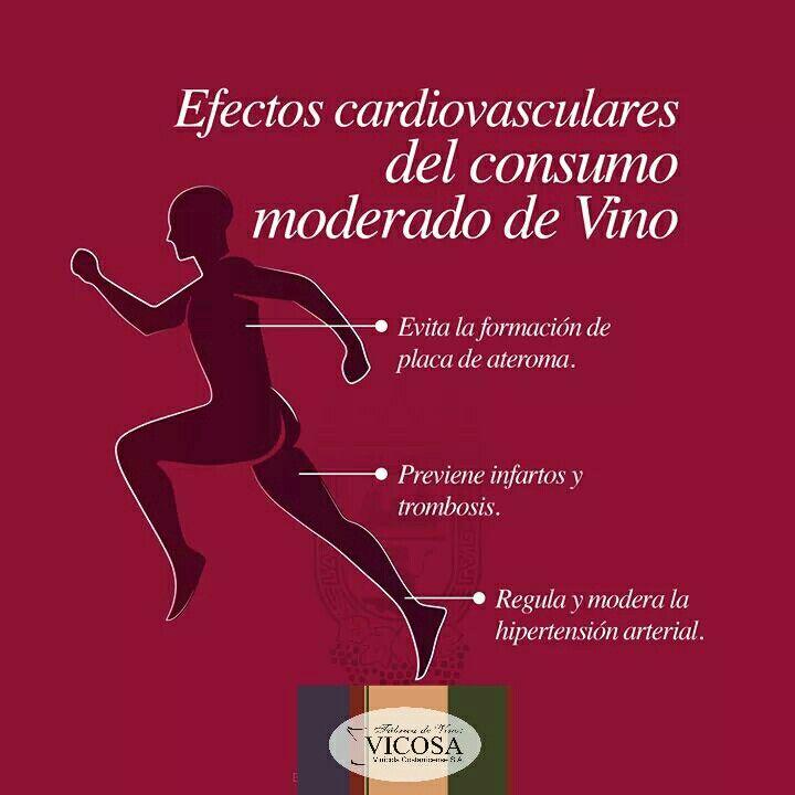 Algunos efectos cardiovasculares del consumo moderado de vino.