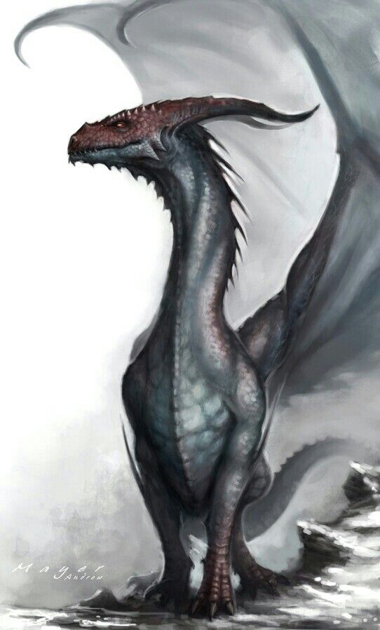 "So hypnotic, so brain melting. Makes everyone think this: ""Are dragons real or are they just a fantasy?"""