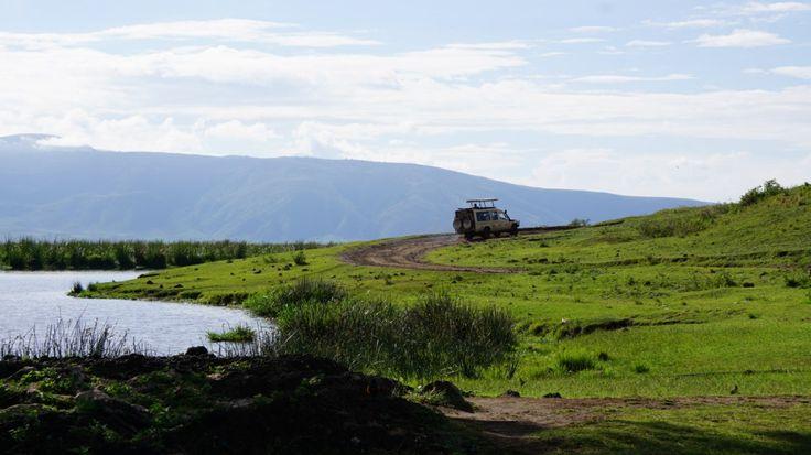 Ngorongoro - Tanzania | Prima aventura in safava si safari