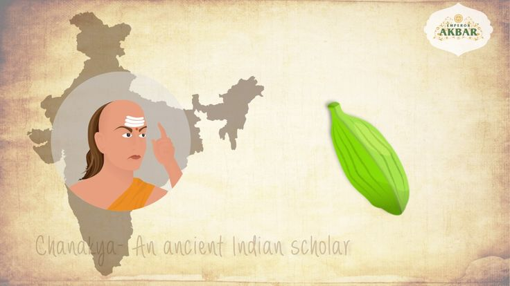 Here is another video for our client Emperor Akbar Cardamoms. Done in 2D animation, it brings out the history & healthbenefits of this tiny pod delightfully. #TVC's #PrintCampaigns #Video #Animation