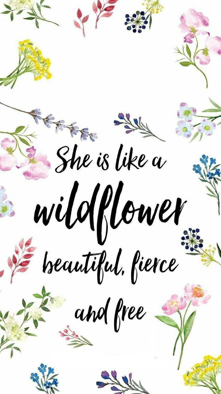 She Is Like A Wildflower Flower Quotes Phone Wallpaper Happy