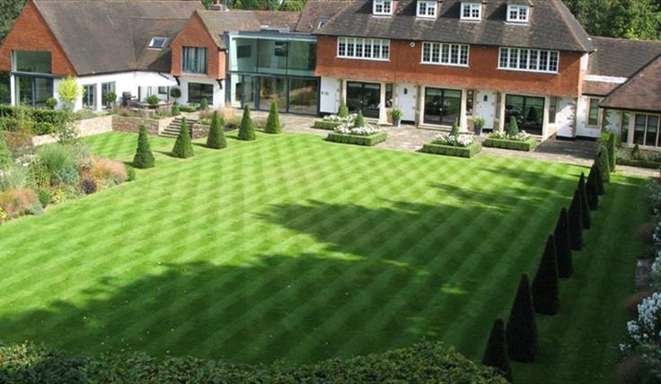 Arun Landscapes Weybridge Large formal lawn and yew pillars
