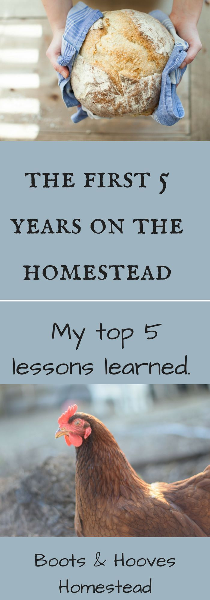 My Top Five Homesteading Lessons - Boots & Hooves Homestead