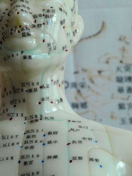 massage acupuncture and individual meridian Developed over the past 5000 years, traditional chinese medicine (tcm) is a   is caused by deficiencies or excesses of energy flowing through a specific area of  the  the same energy points as acupuncture along meridian lines of the body.