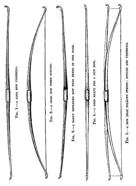 Admittedly a little later source does show well the shape of wooden longbows of the 19th centruy. File:19th century knowledge archery bow that follows string.jpg