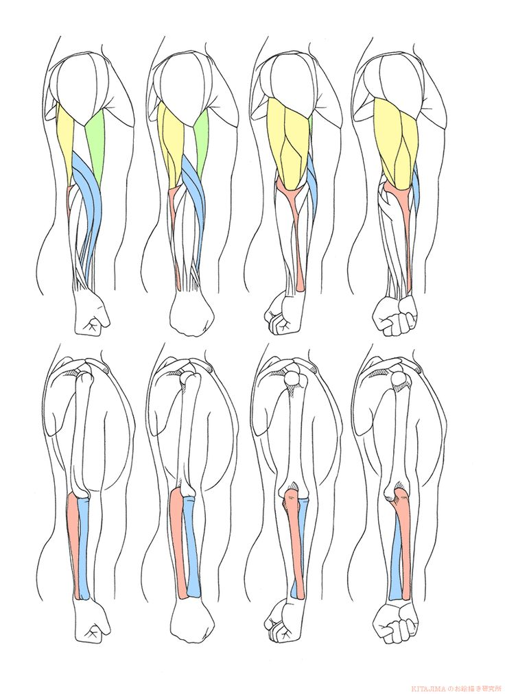 腕ひねり側面 | KITAJIMAのお絵かき研究所                                                                                                                                                                                 もっと見る