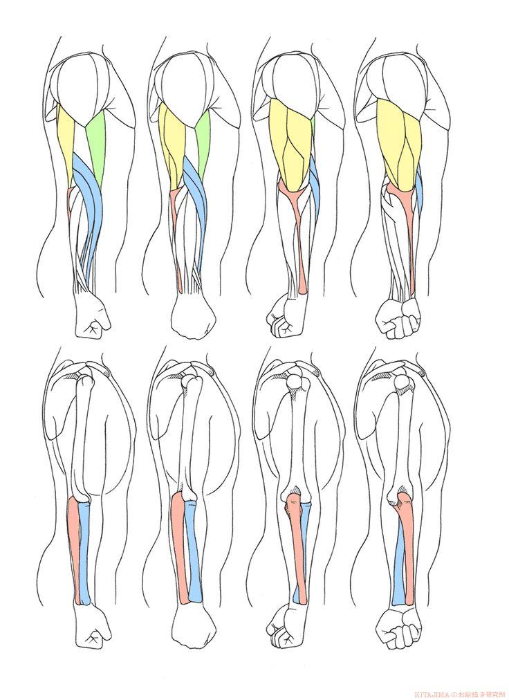腕ひねり側面 | KITAJIMAのお絵かき研究所