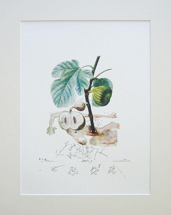 Сальвадор Дали. Инжир. Цветная литография. Серия FlorDali Les Fruits, 1979 | 13 500 р.