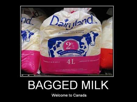 You know you're in Canada when...MILK IN A BAG!